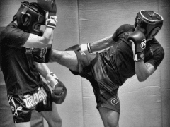 Essential Tips for MMA Sparring – Lina Franco