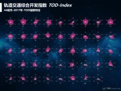 中國軌道交通綜合開發指數研究