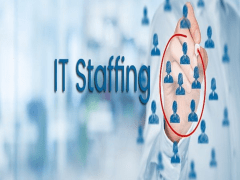 Staffing Services With  Direct IT Staffing inc