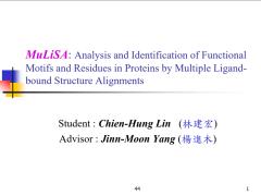 碩士論文:MuLiSA
