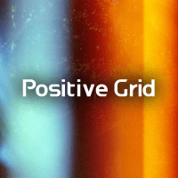 POSITIVE GRID 佳格數位科技有限公司 logo