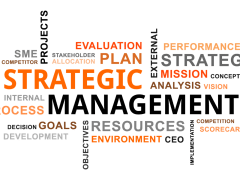 Tomas Vargas Explained Strategic Management