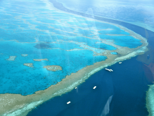 HOW AUSTRALIA IS PROTECTING THE GREAT BARRIER REEF