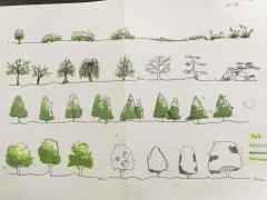 快速設計-樹木表現(Fast Sketch-Tree Form)