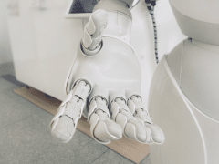 Adaptable AI and the New World
