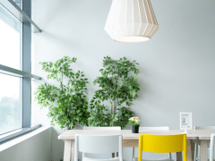 IKEA's Immersive Showroom Experience