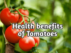 Health Benefits of Tomatoes   John Deschauer