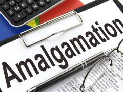 What Is Amalgamation? | Franklin I. Ogele