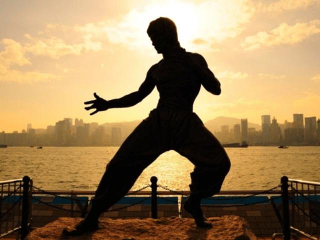 MMA Training Tips for Beginners – Lina Franco