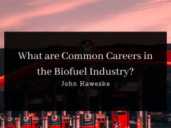 What are Common Careers in the Biofuel Industry?