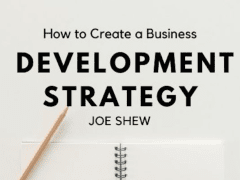 Business Development Strategies | Joe Shew