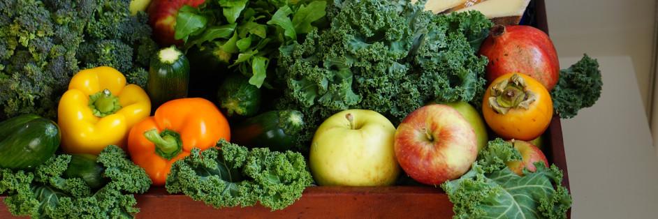 菜蟲農食股份有限公司