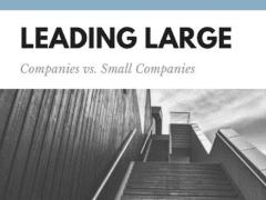 Large Companies vs Small Companies | Joe Shew