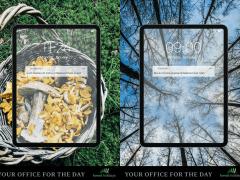 Brand Development - Forest Holidays