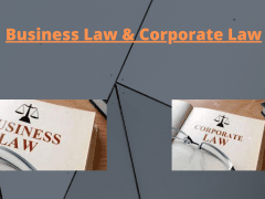 Corporate Law & Business Law | Franklin I. Ogele