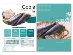 台灣魚 產品型錄