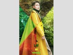 (發表填詞作品)張藝興LAY《夢不落雨林》專輯填詞