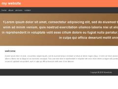 開發的第一個靜態式網站