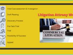 Litigation Attorney Work | Franklin I. Ogele