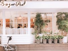 美食店家|主題式文章:適合媽媽放鬆的咖啡廳推薦