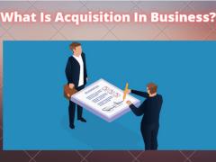 Acquisition In Corporation | Franklin I. Ogele