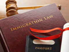 Tips to Choosing an Immigration Lawyer – Lina Fran