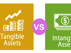 Tangible & Intangible Assets | Franklin I. Ogele