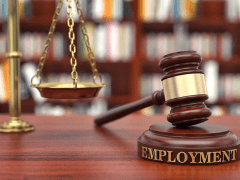 Find the Best Employment Lawyer – Lina Franco