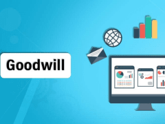 Goodwill In Business | Franklin I. Ogele