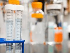 Zain Medical Center  Research on Alzheimer Disease