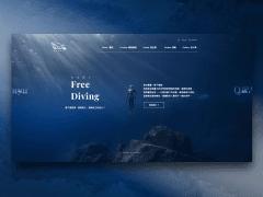 Web Identity Design