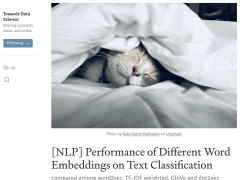 Performance of Different Word Embeddings