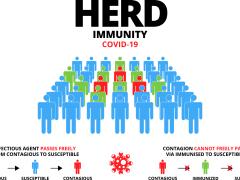 Herd immunity and the White House