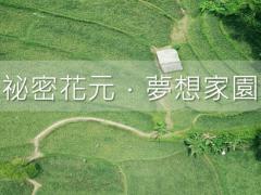 元長鄉企畫書