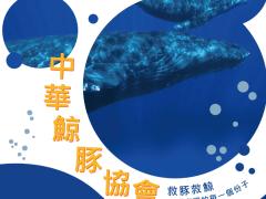 中華鯨豚協會-海報