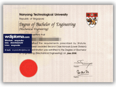 Diploma from Nanyang Technological University