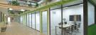 Rising Fintech Corp. 瑞星財經科技股份有限公司 work environment photo