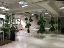 亞洲指標數位行銷顧問股份有限公司 work environment photo
