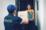 GOGOX_德發貨運有限公司 work environment photo