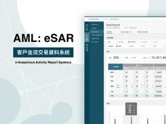 AML:eSAR 客戶金流交易資料系統 UI/UX 設計