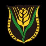 網站執行編輯 logo