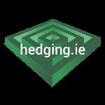 Digital Marketing Intern logo