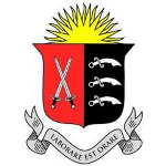 Director of Studies logo