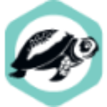 Freelance Web Developer logo
